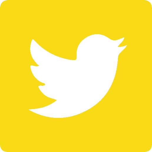 customized twitter share button